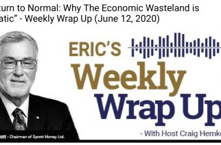 """No Return to Normal: Why The Economic Wasteland is """"Dramatic"""" – Weekly Wrap Up (June 12, 2020)"""